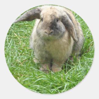 Bumble Rabbit Classic Round Sticker