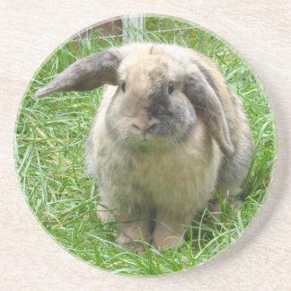 Bumble Rabbit Drink Coasters