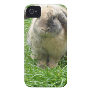 Bumble Rabbit iPhone 4 Case-Mate Cases