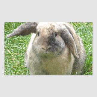 Bumble Rabbit Rectangular Sticker