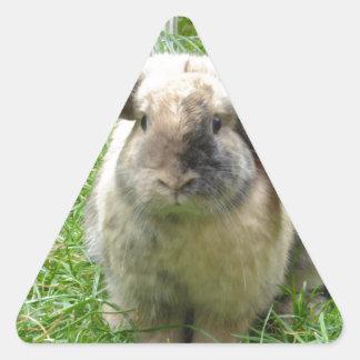 Bumble Rabbit Triangle Sticker