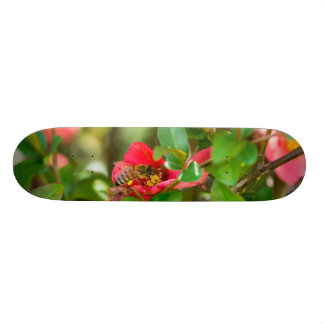 Bumblebee And Azalea Skate Board