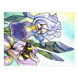 Bumblebee And Irises Postcard