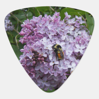 Bumblebee and Lilac Guitar Pick