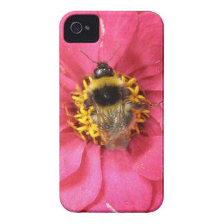 Bumblebee Blackberry Bold Case