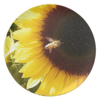Bumblebee Dinner Plates
