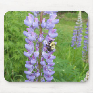 Bumblebee on a Lupine Flower Mouse Pad