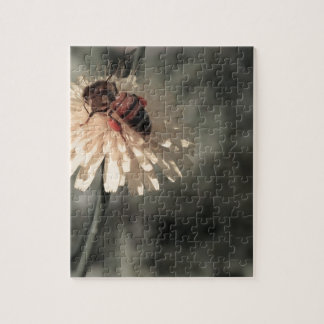 Bumblebee on flower jigsaw puzzle