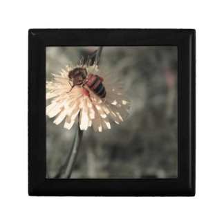 Bumblebee on flower small square gift box