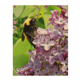 Bumblebee  On Lilac close up by djoneill Wood Wall Decor