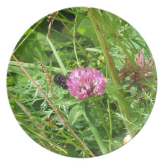 Bumblebee on wildflower party plate
