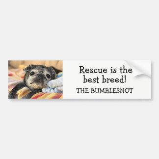 Bumblesnot bumper sticker: Rescue is best breed! Bumper Sticker