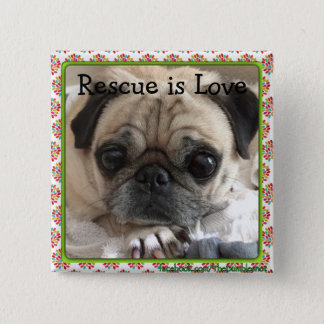 Bumblesnot button: Itsy Pug/Rescue is Love 15 Cm Square Badge