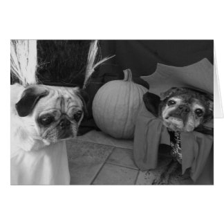 Bumblesnot Halloween card: Spell on You Card