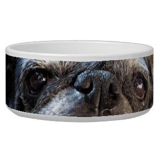 Bumblesnot Pet Food Bowl