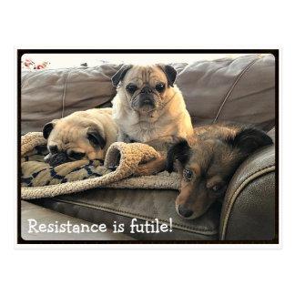 Bumblesnot: Resistance is Futile postcard