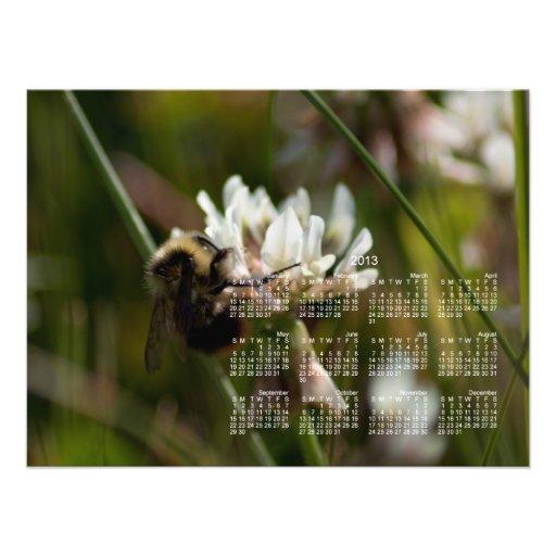 Bumbling in the Clover; 2013 Calendar Photo