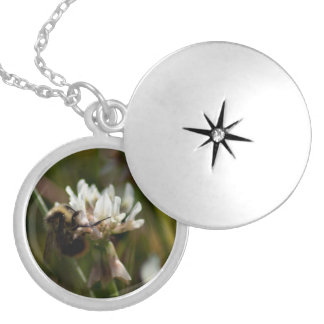Bumbling in the Clover; No Text Round Locket Necklace