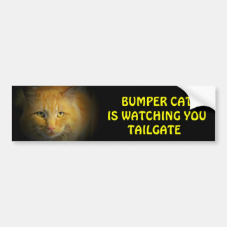 Bumper Cat is watching TAILGATE 25 Bumper Sticker