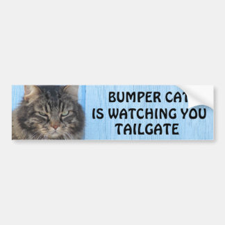 Bumper Cat is watching TAILGATE 6 meme Bumper Sticker