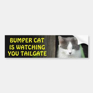 Bumper Cat is Watching You TAILGATE 4 Bumper Sticker