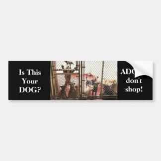 Bumper sticker Animal Welfare ADOPT DON'T SHOP