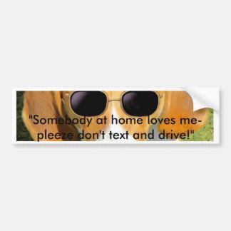 Bumper Sticker Cool Hound Dog w Sunglasses