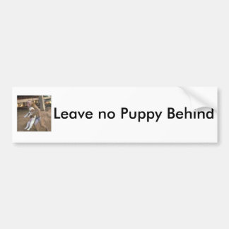Bumper Sticker for Dog Lovers