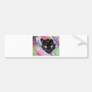 Bumper Sticker: Funny Cat wrapped in Blankets Bumper Sticker
