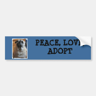 Bumper Sticker with pug