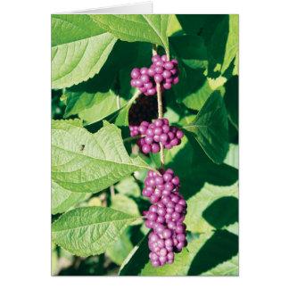 Bunch o' Berries Greeting Card