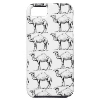 bunch of camels herd iPhone 5 cases