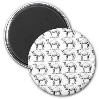 bunch of camels herd magnet