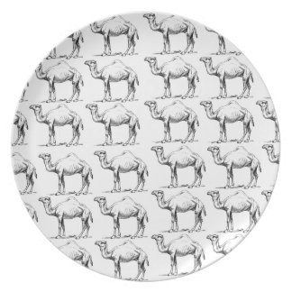 bunch of camels herd plate
