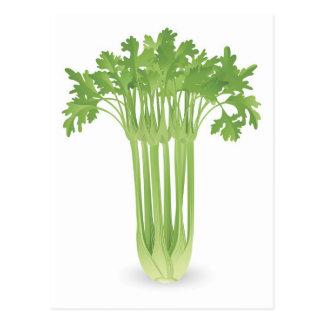Bunch of celery illustration postcard