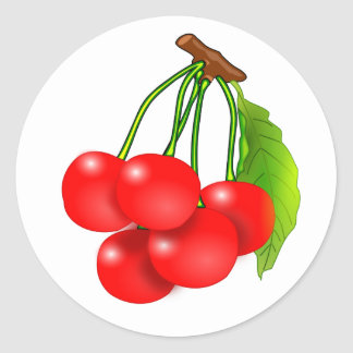 Bunch of cherries classic round sticker