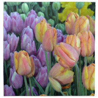 Bunch of colorful tulips napkin