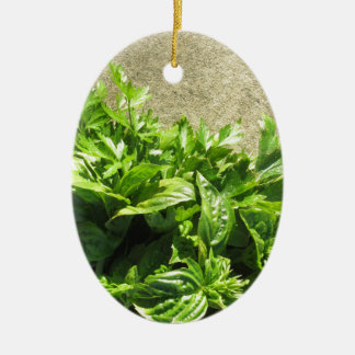 Bunch of fresh herbs ceramic ornament