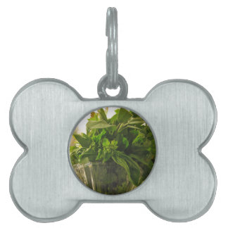 Bunch of fresh herbs from garden pet name tags