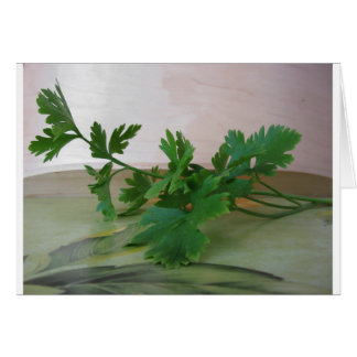 Bunch of fresh parsley on the table card