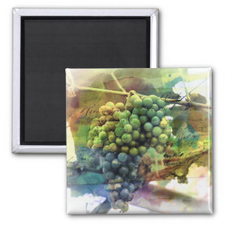 BUNCH OF GRAPES MAGNET 2 INCH SQUARE MAGNET