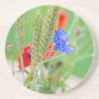 Bunch of of red poppies, cornflowers and ears coaster