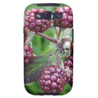 Bunch of Unripe Blackberries Galaxy SIII Cases
