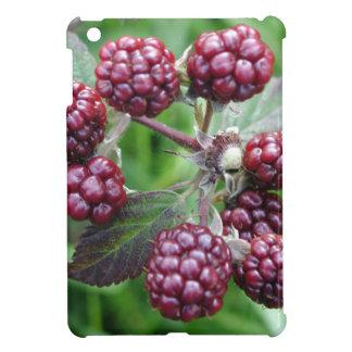 Bunch of Unripe Blackberries Case For The iPad Mini