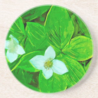 Bunchberry White Wildflower Abstract Beverage Coaster