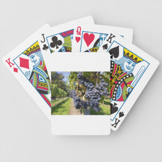 Bunches of blue grapes with path poker deck