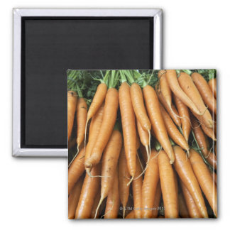 Bunches of carrots, full frame square magnet