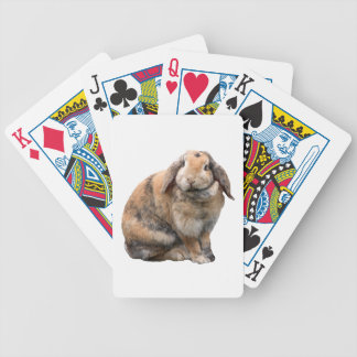 Bunnie lop-eared bunny rabbit cute photo, gift bicycle poker cards