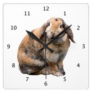 Bunnie rabbit lop-eared beautiful photo portrait wallclock