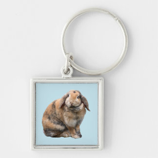 Bunnie rabbit lop-eared keychain, gift idea Silver-Colored square key ring